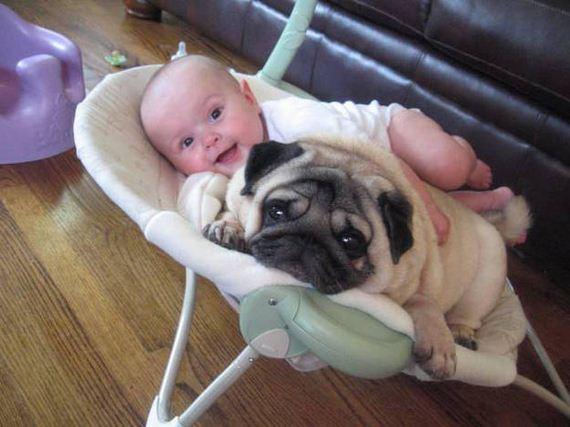 01-Smart Kids-Dogs-Really-Best-Friends