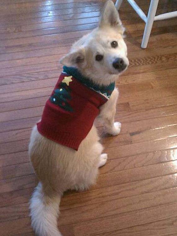 01-Ugly-Christmas-Sweaters