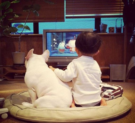 01-bffs_a_boy_and_his_bull_dog