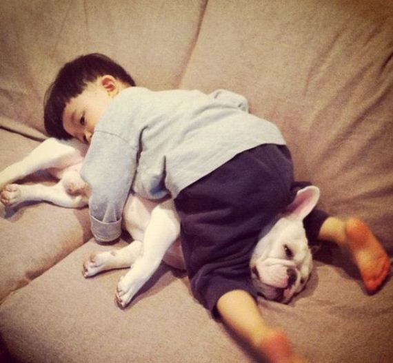 02-bffs_a_boy_and_his_bull_dog