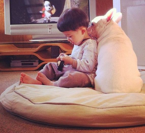 04-bffs_a_boy_and_his_bull_dog
