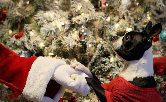 05-Posed-With-Santa-ClausPosed-With-Santa-Claus