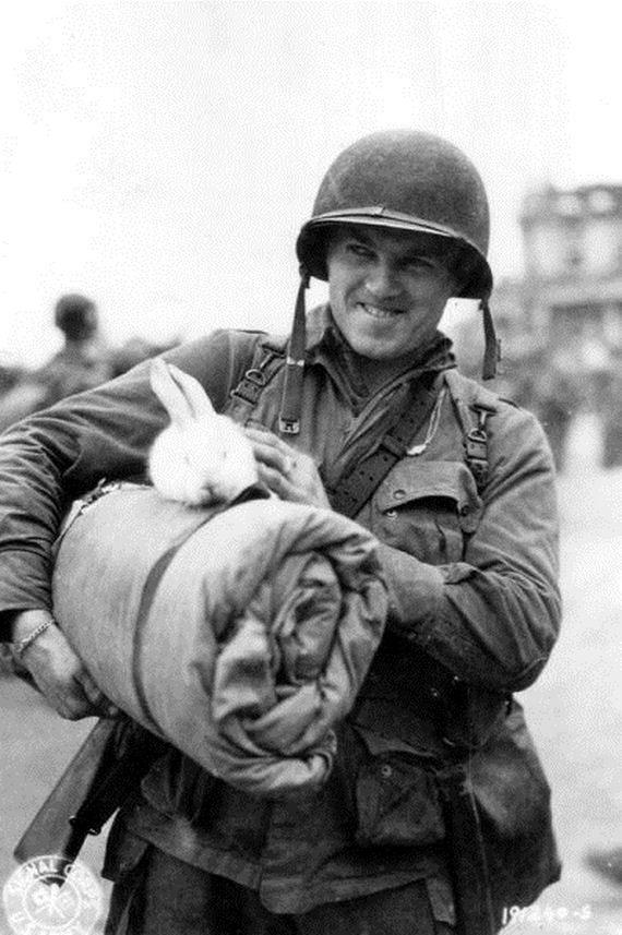 05-Soldiers-Pets