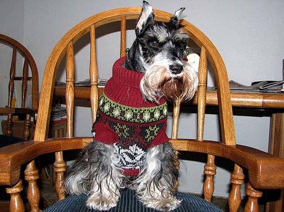 05-Ugly-Christmas-Sweaters