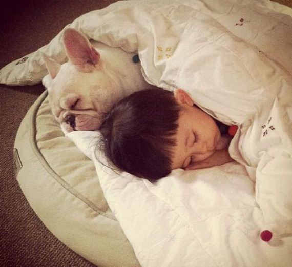 05-bffs_a_boy_and_his_bull_dog
