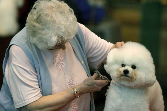 06-Owners-Who-Look-Dogs
