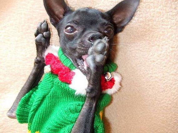 06-Ugly-Christmas-Sweaters