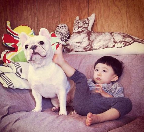 06-bffs_a_boy_and_his_bull_dog
