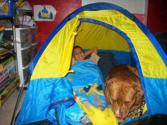 08-Smart Kids-Dogs-Really-Best-Friends