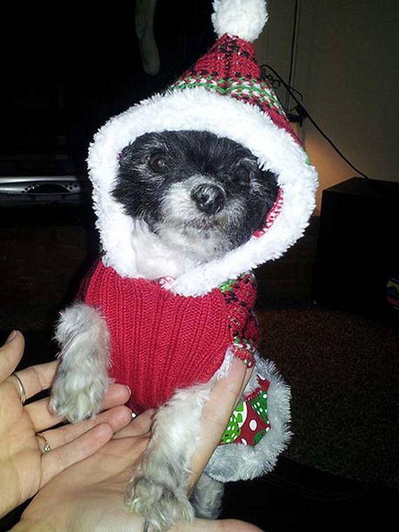 08-Ugly-Christmas-Sweaters
