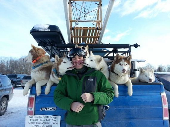 Sled Dogs Who Are Way Too Happy About Winter