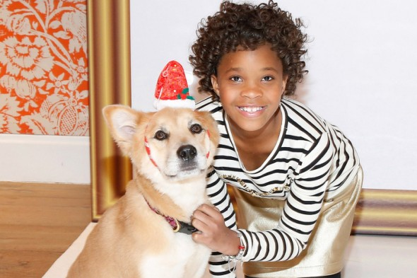 Rescue Dog is Chosen to Play Sandy in Upcoming Movie Version of Annie