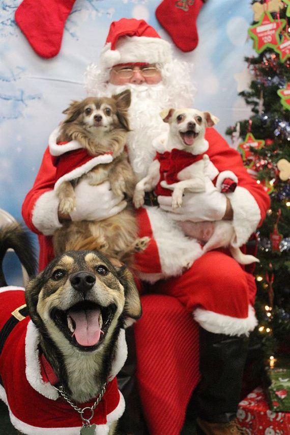 14-Posed-With-Santa-ClausPosed-With-Santa-Claus