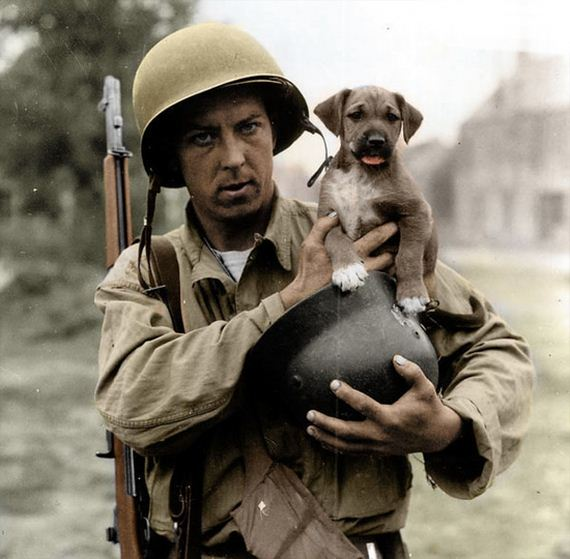 14-Soldiers-Pets