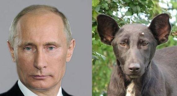 14-Uncanny-Resemblance