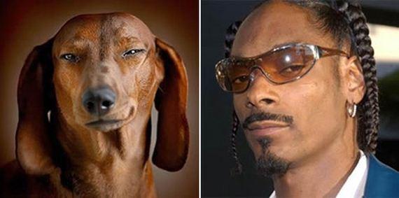 19-Uncanny-Resemblance