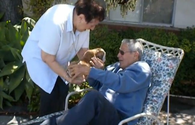 You're NEVER Too Old To Love A Puppy – This Heartwarming Video Proves It