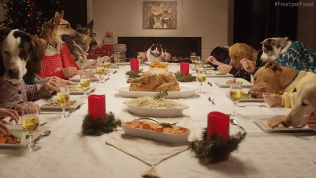 These Dogs And A Cat Enjoying A Festive Feast Looks More Fun Than Our Christmas Day