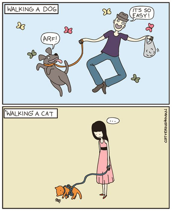 03-Cats-Vs-Dogs