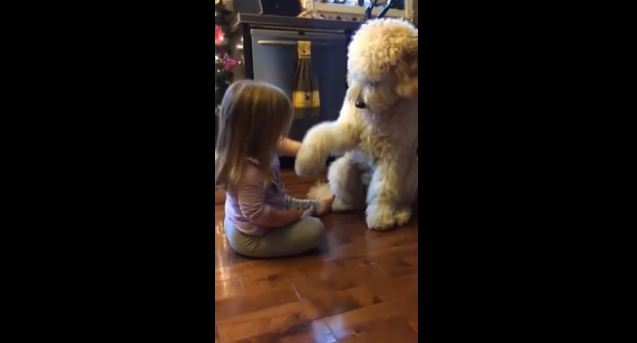 What This Daddy Captured His Daughter Doing With Their Dog Is Beyond Words CUTE!