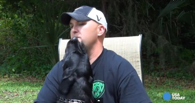 Soldier's Dog Interrups Interview When He Notices His Master Is In Distress