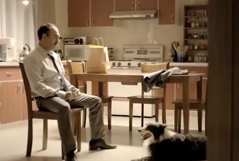 "Man Sits His Dog Down And Has ""The Talk"". The Dog's Reaction, Priceless!"