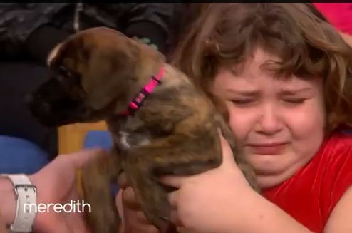 Emotional Little Girl Is Surprised With A Puppy She Thought Was Lost Forever