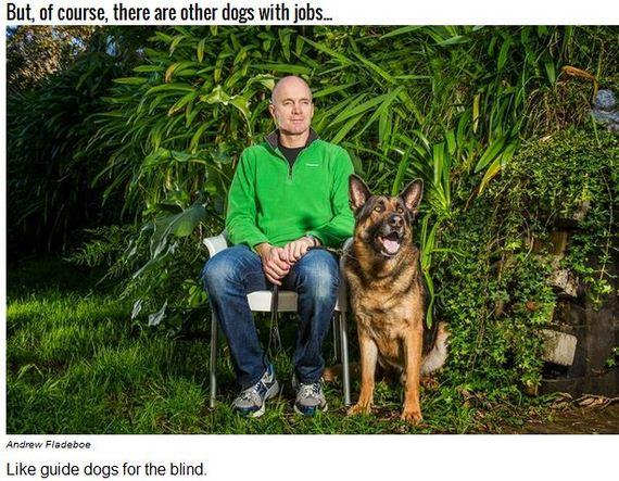04-Inspiring-Dogs