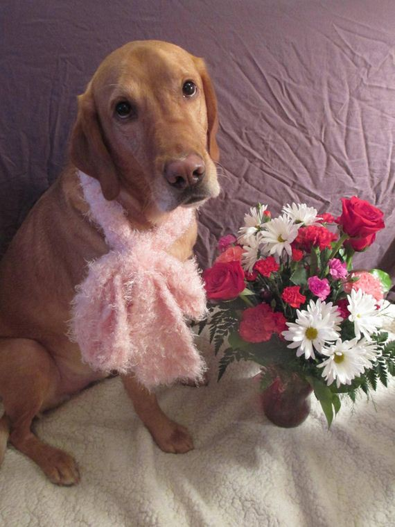11-Valentines-Day