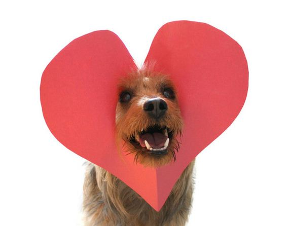 14-Valentines-Day
