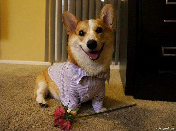 15-Valentines-Day