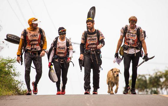 17-Stray-Dog-Joins-Swedish