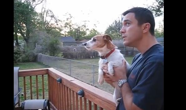"""Watch What Happens When This Dog's Owner Says """"Squirrel"""" -LOL!"""