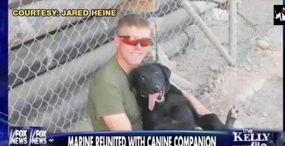 Marine Reunited With Dog Who Saved His Life