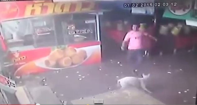 Watch What Happens When This Animal Abuser Tries to Kick a Dog. Serves Him Right!! :)