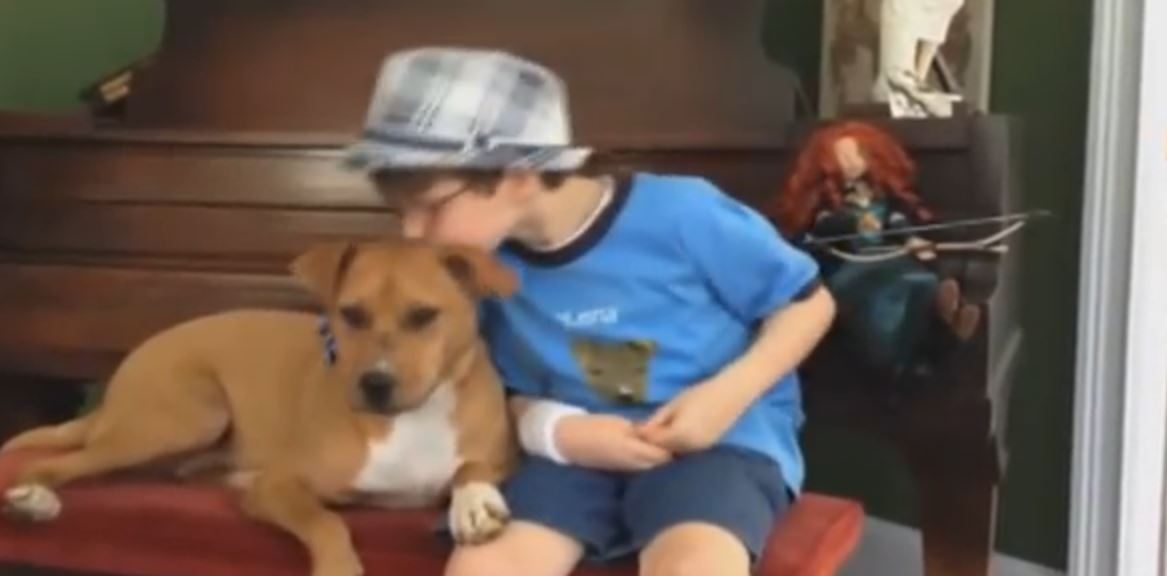 You Won't Believe What Happened When This Dying Dog Met An Autistic Boy. Just Amazing.