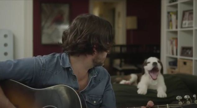 They Put a Cute Guy & a Puppy in a Music Video. The Result? Everyone Needs to See This!