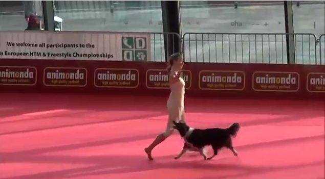 When You See What This Dog Is Doing You'll Be Amazed, But Mostly Jealous