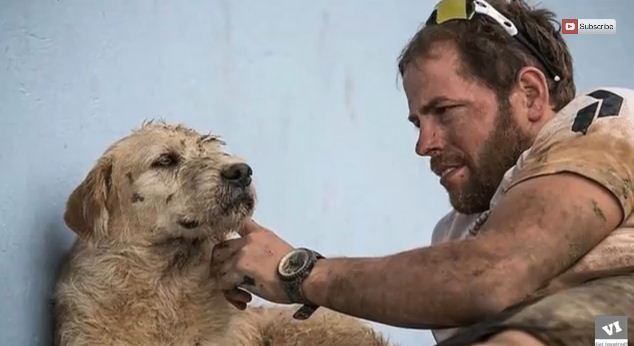 This Hiker Fed A Stray Dog But Never Expected This To Happen