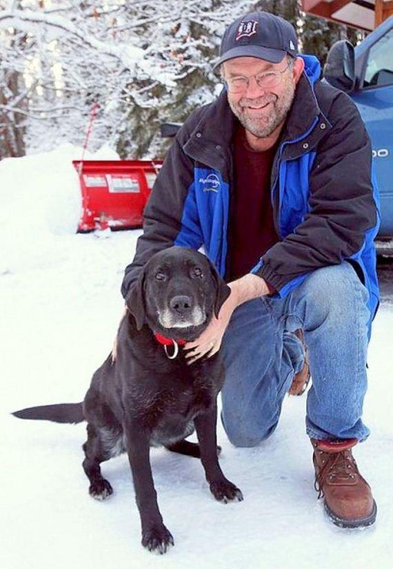 Blind Senior Dog Survives Two Weeks in Alaskan Cold