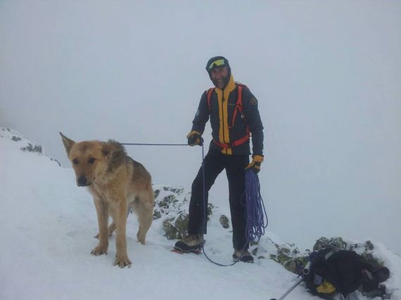 Climber Rescuers Help Lost Dog Get Back Home