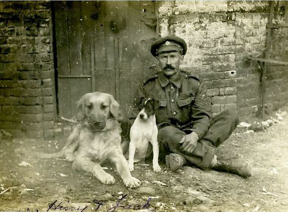 Dogs of war: Previously unseen photographs show British and German soldiers posing up with their pets in WW1 France