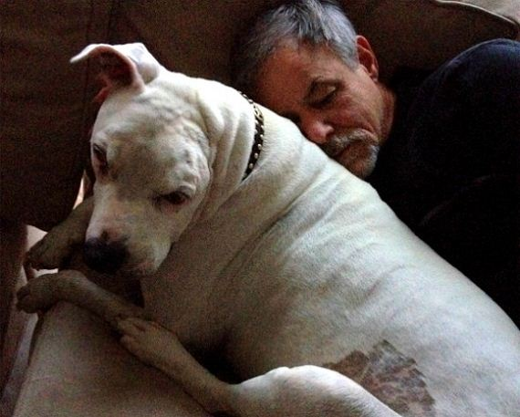Former Bait Dog Oogy Died Surrounded by Loving Family