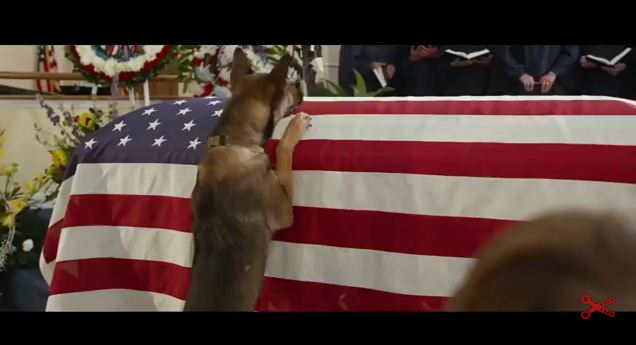 The Way This Dog Reacts To His Owners Sacrifice Is So Powerful.