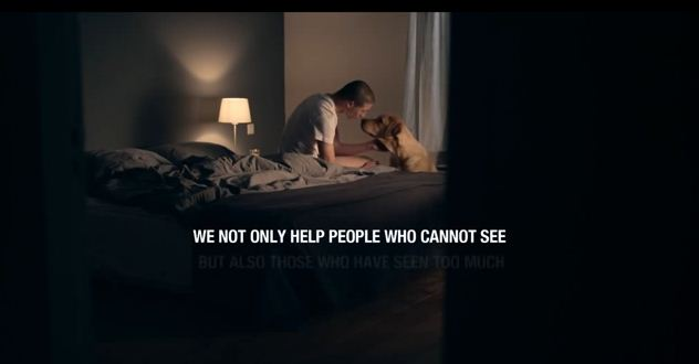 This Video Shows How Important Service Dogs Can Be To Veterans With PTSD