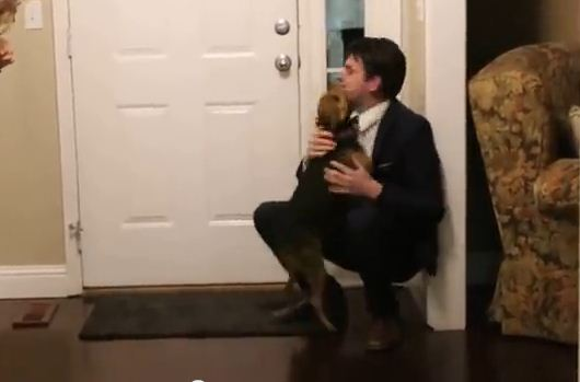 This Dog Hasn't Seen His Owner In 2 Years And His Reaction When The Door Opens Will Melt Your Heart