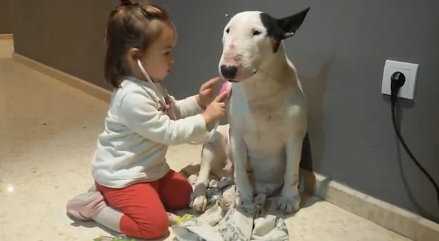 Watching This Little Girl Play Doctor With Her Patient Dog Is the Best Kind of Medicine