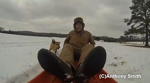 90-Year-Old World War Veteran Goes Sledding With His Dog