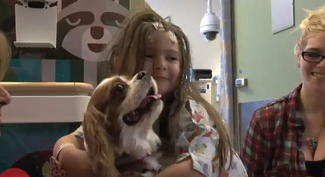 Canines Bring Abundant Joy By Cuddling With Hospitalized Kids At UCLA Hospital