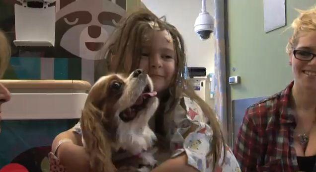 Canines Bring Abundant Joy By Cuddling With Hospitalized Kids At UCLA Hospital